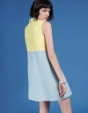 Lace-Trimmed Color Block Dress