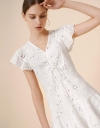 Lace Embroidery Ruched Dress